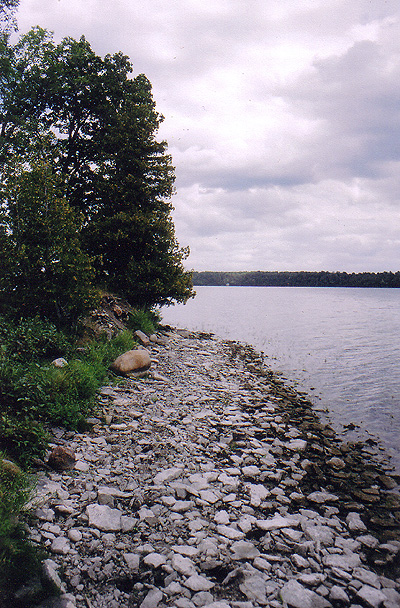 loughborough shore